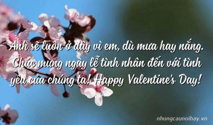 Anh sẽ luôn ở đây vì em, dù mưa hay nắng. Chúc mừng ngày lễ tình nhân đến với tình yêu của chúng ta! Happy Valentine's Day!