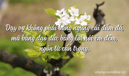 Dạy vợ không phải bằng ngững cái đấm đá, mà bằng đạo đức bằng lời nói êm đềm, ngôn từ cẩn trọng.