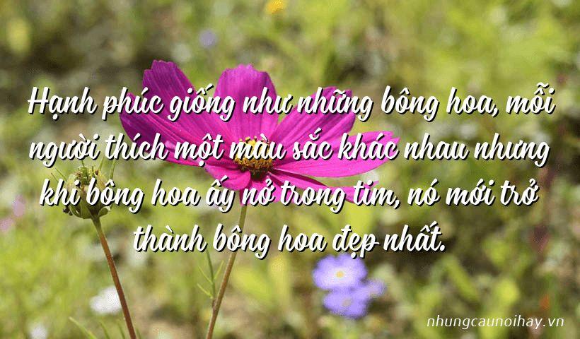 Hạnh phúc giống như những bông hoa, mỗi người thích một màu sắc khác nhau nhưng khi bông hoa ấy nở trong tim, nó mới trở thành bông hoa đẹp nhất.