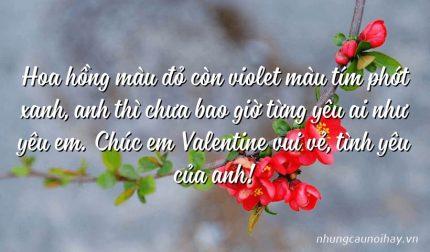 Hoa hồng màu đỏ còn violet màu tím phớt xanh, anh thì chưa bao giờ từng yêu ai như yêu em. Chúc em Valentine vui vẻ, tình yêu của anh!