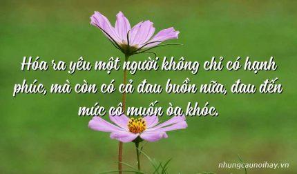 Hóa ra yêu một người không chỉ có hạnh phúc, mà còn có cả đau buồn nữa, đau đến mức cô muốn òa khóc.