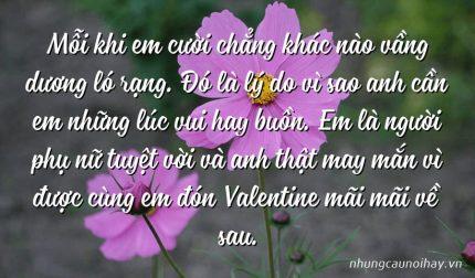 Mỗi khi em cười chẳng khác nào vầng dương ló rạng. Đó là lý do vì sao anh cần em những lúc vui hay buồn. Em là người phụ nữ tuyệt vời và anh thật may mắn vì được cùng em đón Valentine mãi mãi về sau.