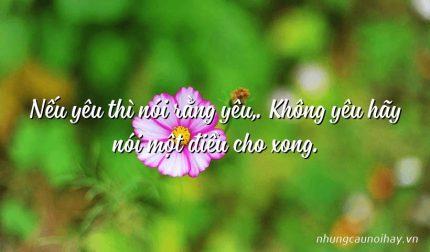 Nếu yêu thì nói rằng yêu,. Không yêu hãy nói một điều cho xong.