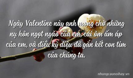 Ngày Valentine này anh mong chờ những nụ hôn ngọt ngào của em, cái ôm ấm áp của em, và điều kỳ diệu đã gắn kết con tim của chúng ta.