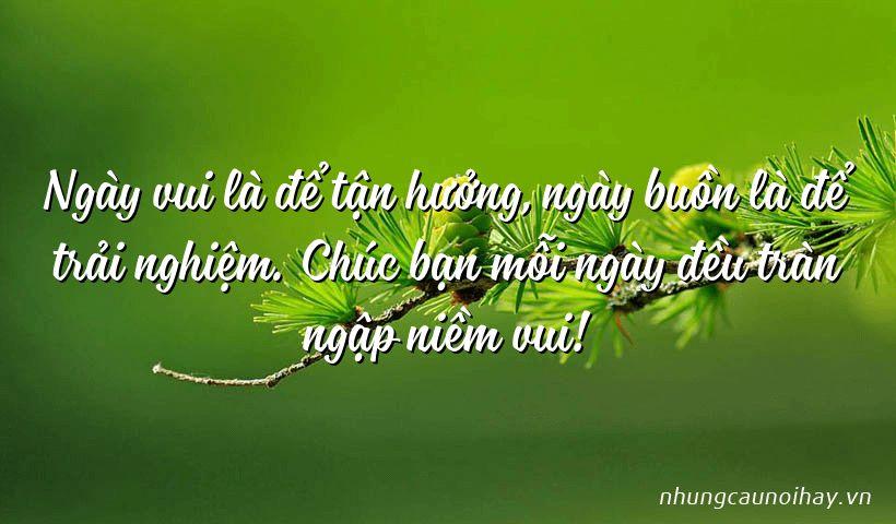 Ngày vui là để tận hưởng, ngày buồn là để trải nghiệm. Chúc bạn mỗi ngày đều tràn ngập niềm vui!