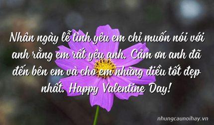 Nhân ngày lễ tình yêu em chỉ muốn nói với anh rằng em rất yêu anh. Cảm ơn anh đã đến bên em và cho em những điều tốt đẹp nhất. Happy Valentine Day!