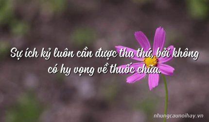 Sự ích kỷ luôn cần được tha thứ, bởi không có hy vọng về thuốc chữa.