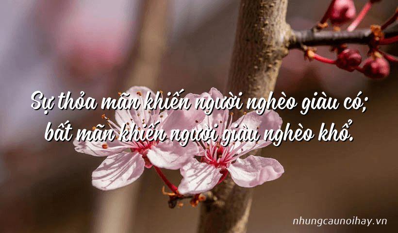 Sự thỏa mãn khiến người nghèo giàu có; bất mãn khiến người giàu nghèo khổ.