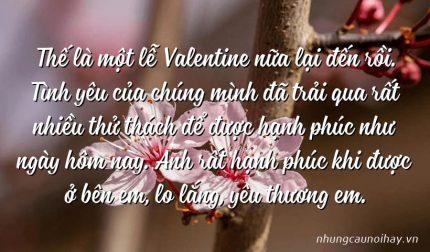 Thế là một lễ Valentine nữa lại đến rồi. Tình yêu của chúng mình đã trải qua rất nhiều thử thách để được hạnh phúc như ngày hôm nay. Anh rất hạnh phúc khi được ở bên em, lo lắng, yêu thương em.