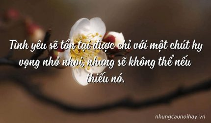 Tình yêu sẽ tồn tại được chỉ với một chút hy vọng nhỏ nhoi, nhưng sẽ không thể nếu thiếu nó.