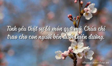 Tình yêu thật sự là món quà mà Chúa chỉ trao cho con người bên dưới thiên đường.