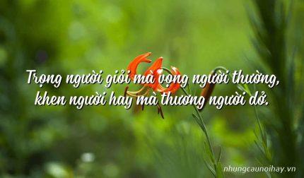 Trọng người giỏi mà vọng người thường, khen người hay mà thương người dở.