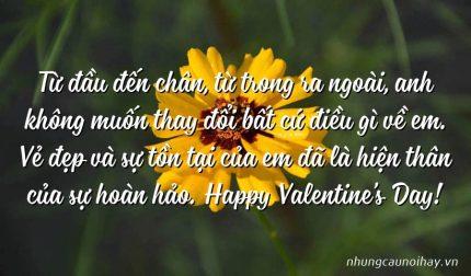 Từ đầu đến chân, từ trong ra ngoài, anh không muốn thay đổi bất cứ điều gì về em. Vẻ đẹp và sự tồn tại của em đã là hiện thân của sự hoàn hảo. Happy Valentine's Day!