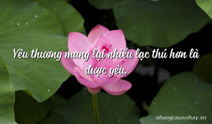Yêu thương mang lại nhiều lạc thú hơn là được yêu.