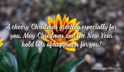 A cheery Christmas greeting especially for you. May Christmas and the New Year hold lots of happiness for you!