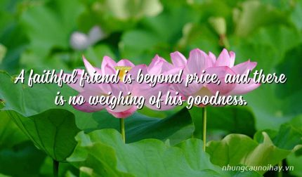 A faithful friend is beyond price, and there is no weighing of his goodness.