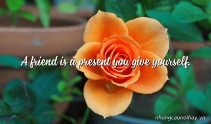 A friend is a present you give yourself.