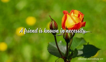 A friend is known in necessity.