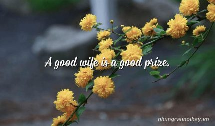A good wife is a good prize.