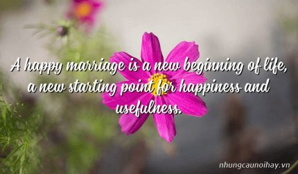 A happy marriage is a new beginning of life, a new starting point for happiness and usefulness.