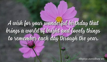 A wish for your wonderful birthday that brings a world of bright and lovely things to remember each day through the year.