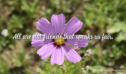 All are not friends that speaks us fair.
