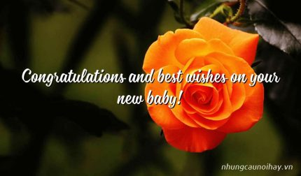 Congratulations and best wishes on your new baby!
