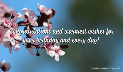 Congratulations and warmest wishes for your birthday and every day!