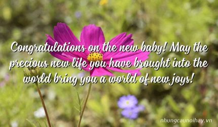 Congratulations on the new baby! May the precious new life you have brought into the world bring you a world of new joys!