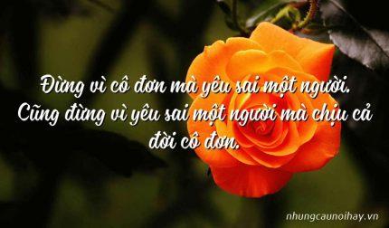 Đừng vì cô đơn mà yêu sai một người. Cũng đừng vì yêu sai một người mà chịu cả đời cô đơn.