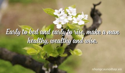 Early to bed and early to rise, make a man healthy, wealthy and wise.