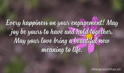 Every happiness on your engagement! May joy be yours to have and hold together. May your love bring a beautiful new meaning to life.