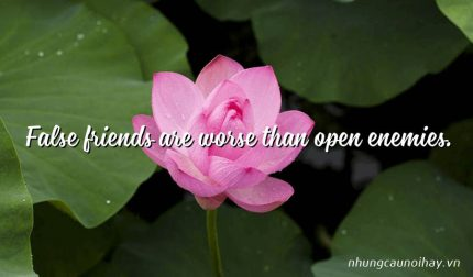 False friends are worse than open enemies.