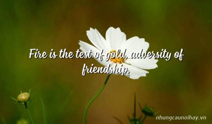 Fire is the test of gold, adversity of friendship.