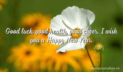Good luck, good health, good cheer. I wish you a Happy New Year.