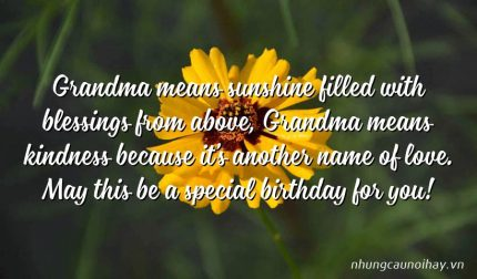 Grandma means sunshine filled with blessings from above, Grandma means kindness because it's another name of love. May this be a special birthday for you!