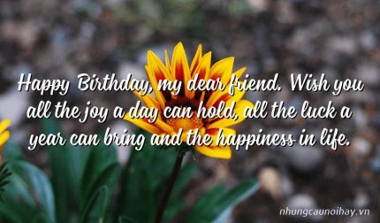 Happy Birthday, my dear friend. Wish you all the joy a day can hold, all the luck a year can bring and the happiness in life.