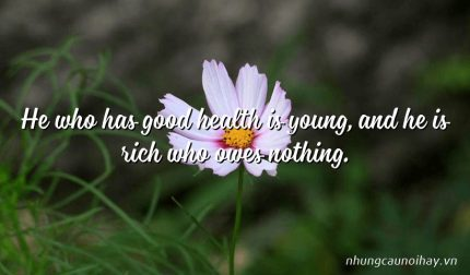 He who has good health is young, and he is rich who owes nothing.
