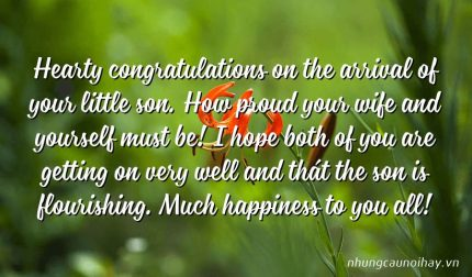 Hearty congratulations on the arrival of your little son. How proud your wife and yourself must be! I hope both of you are getting on very well and thát the son is flourishing. Much happiness to you all!