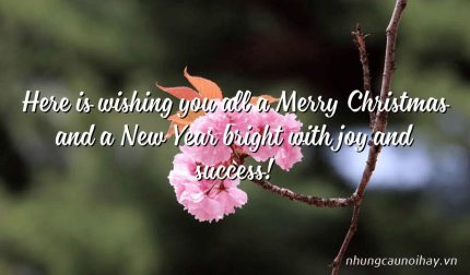 Here is wishing you all a Merry Christmas and a New Year bright with joy and success!