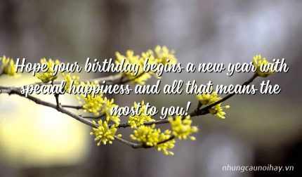 Hope your birthday begins a new year with special happiness and all that means the most to you!