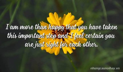 I am more than happy that you have taken this important step and I feel certain you are just right for each other.