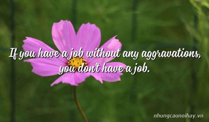 If you have a job without any aggravations, you don't have a job.