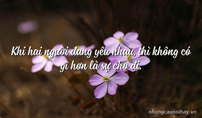 Khi hai người đang yêu nhau, thì không có gì hơn là sự cho đi.