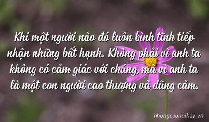 Khi một người nào đó luôn bình tĩnh tiếp nhận những bất hạnh. Không phải vì anh ta không có cảm giác với chúng, mà vì anh ta là một con người cao thượng và dũng cảm.