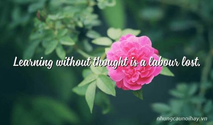 Learning without thought is a labour lost.