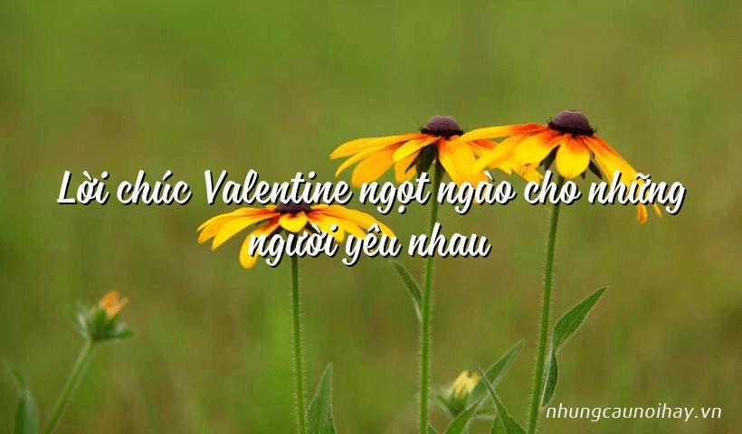 Lời chúc Valentine ngọt ngào cho những người yêu nhau