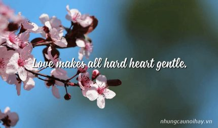 Love makes all hard heart gentle.
