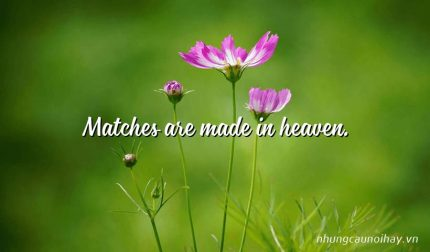Matches are made in heaven.
