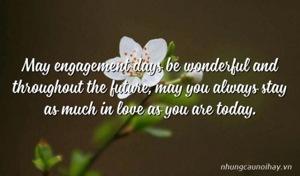 May engagement days be wonderful and throughout the future, may you always stay as much in love as you are today.